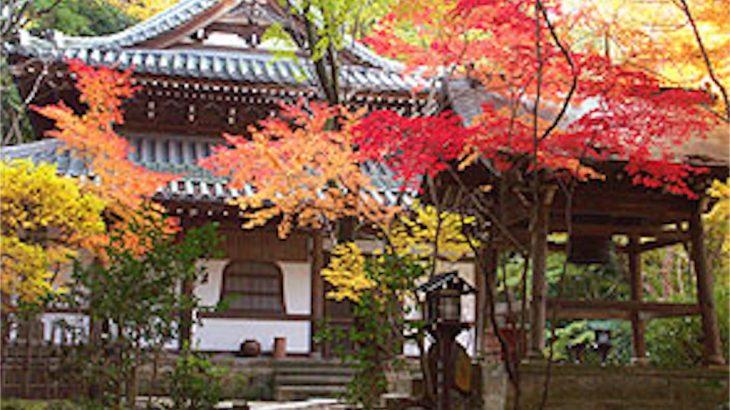 京都の長楽寺(ちょうらくじ)に行ってきました【京の四季】