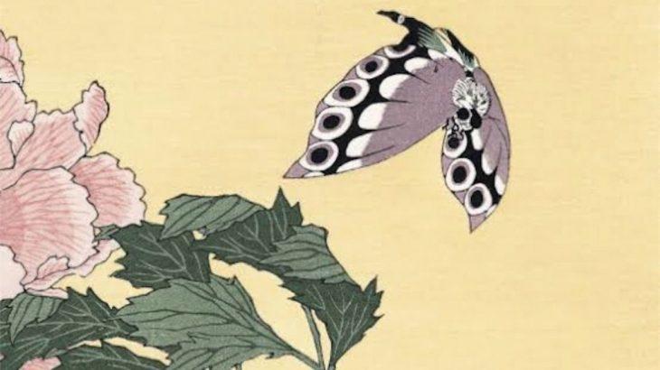 長唄「扇蝶(おおぎちょう)」