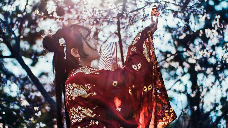日本舞踊教室を選ぶとき、流派の有名さ・大きさに惑わされてはいけない【本当に大切なこと】